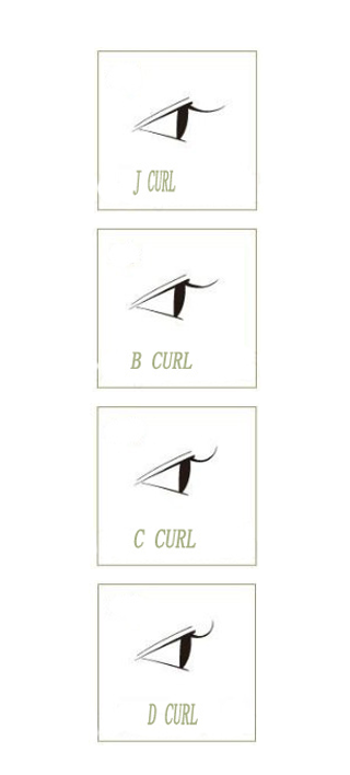 eyelash curl type